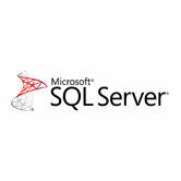 SQL Server Integration and Synchronization